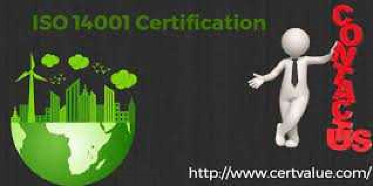 Do you really need a consultant for implementation of ISO 14001 certification in Qatar?