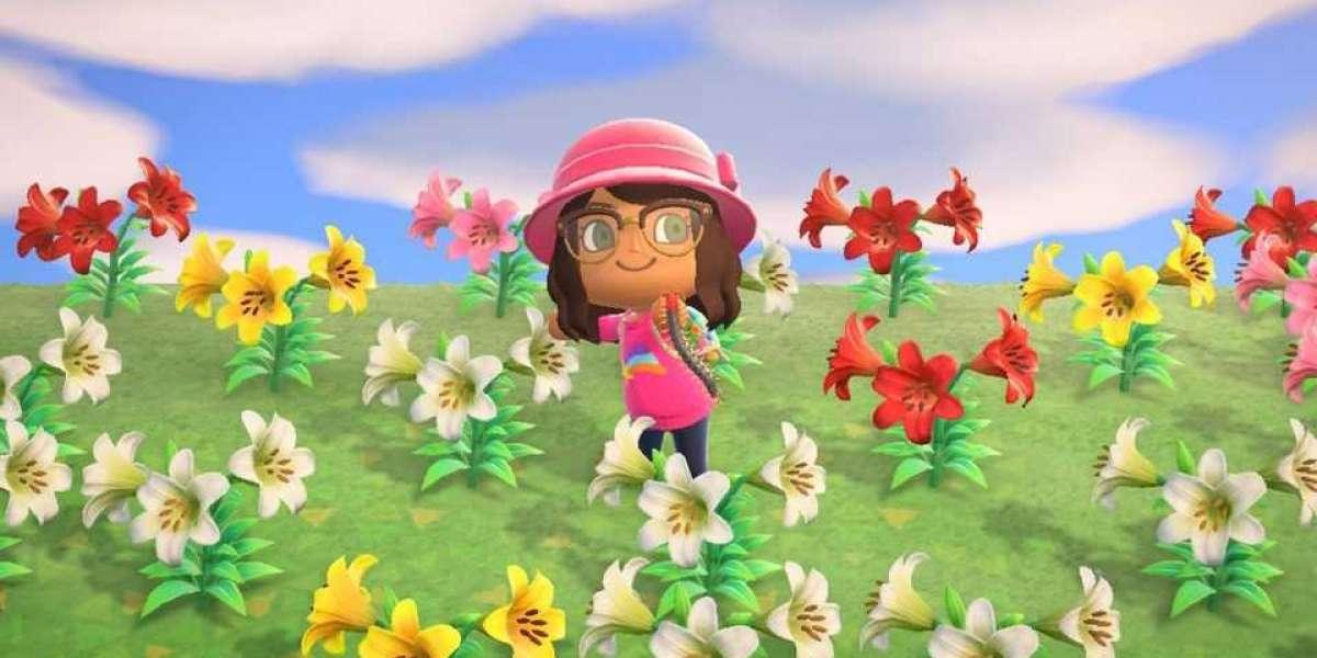 Buy Animal Crossing Items alongside the manner